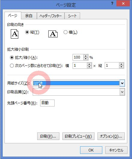 PC9_3124